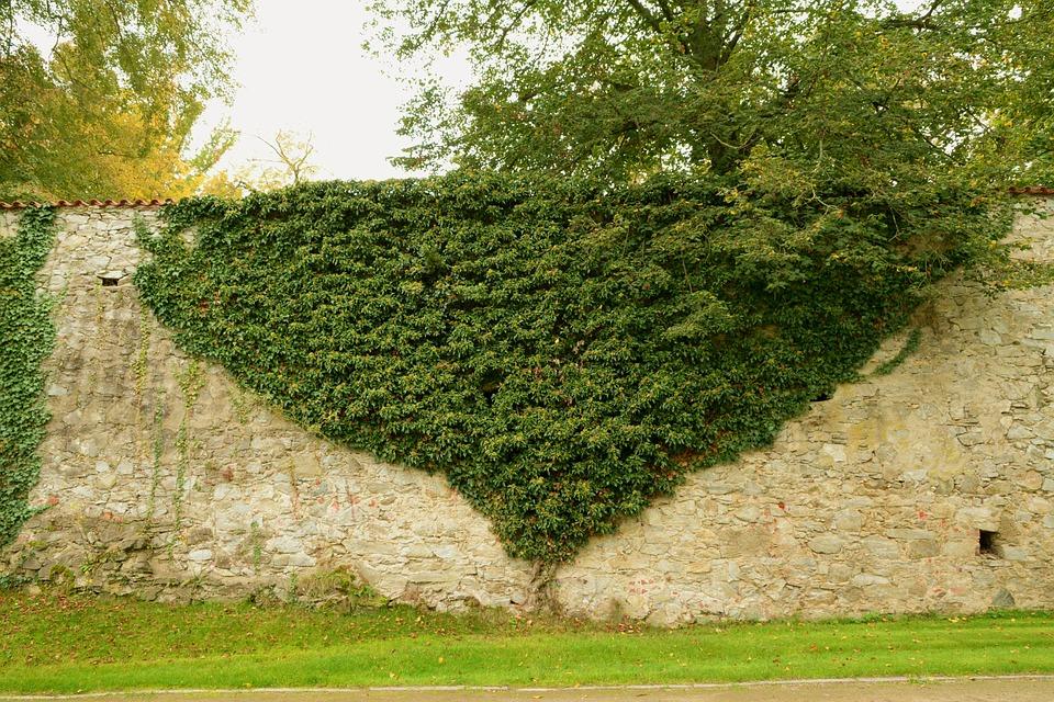 kamenná hradba